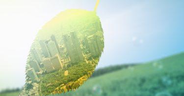 Экологические правонарушения