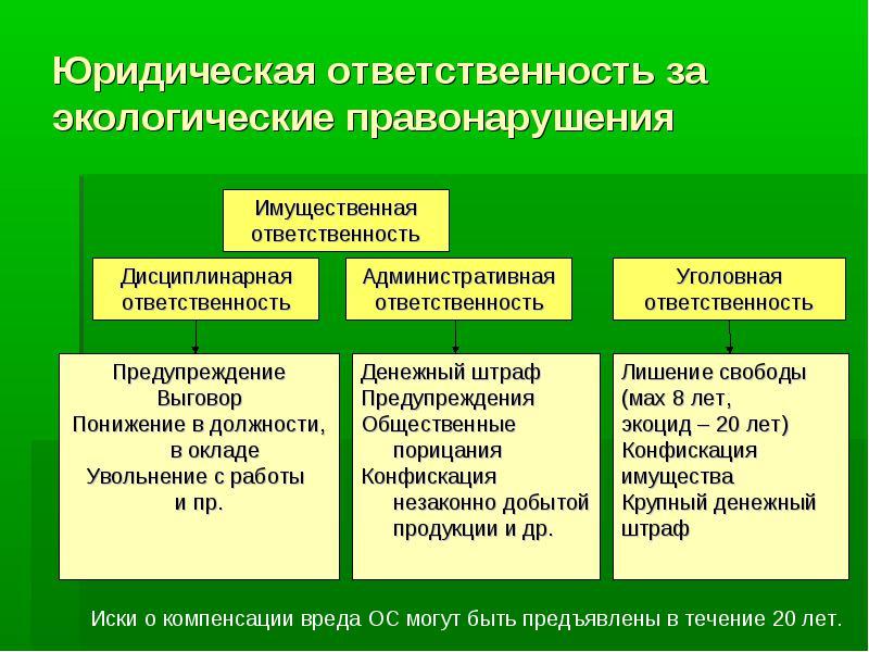 Виды юридической ответственности за экологические правонарушения