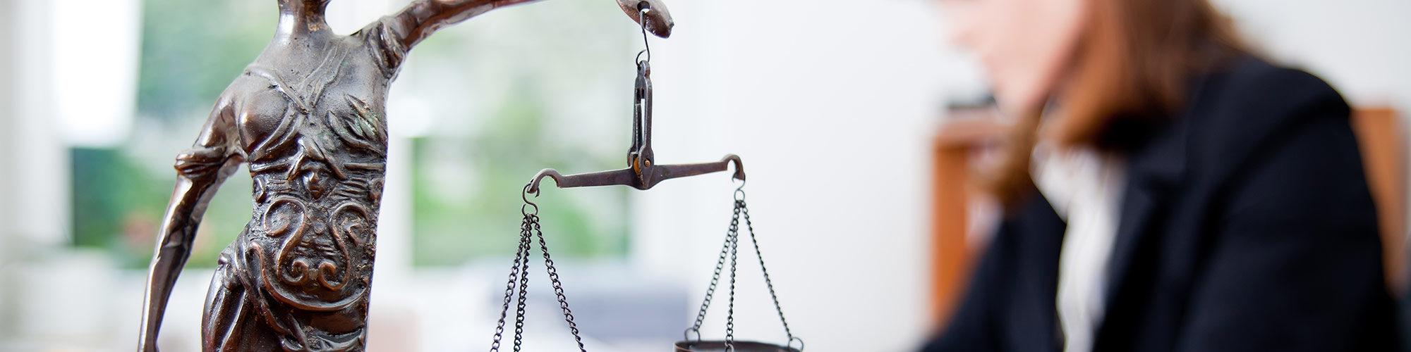 Виндикационный иск в гражданском праве