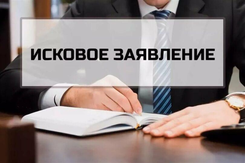 Исковые заявления в суд образцы и примерами 2020